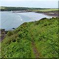SM8606 : Pembrokeshire Coast Path towards Sandy Haven by Mat Fascione