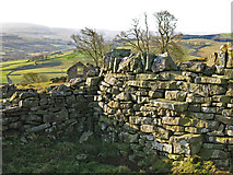 NY9539 : Stone stile in wall east of Laverock Seat by Mike Quinn