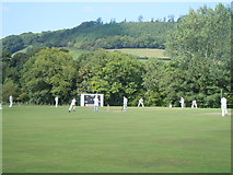 SN4124 : Criced Bronwydd Arms cricket by David Jones
