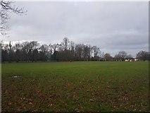 SJ7886 : Halecroft Park by DS Pugh