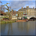 TL4458 : Pollarded willow and chauffeur punts by John Sutton