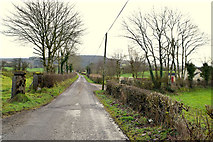 H4681 : Timurty Road, Timurty by Kenneth  Allen