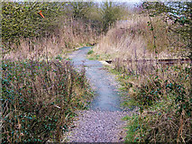 SD3344 : Foot Crossing across the Disused Railway near ICI Thornton by David Dixon