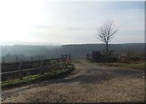 SE6091 : Entrance to Hazel Gill by David Brown
