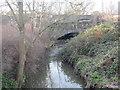TQ3598 : Turkey Brook, near Enfield by Malc McDonald