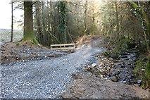 NX4465 : New Path at Bruntis Loch by Billy McCrorie