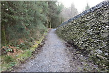 NX4465 : Trail at the Dam Wall, Bruntis Loch by Billy McCrorie