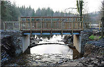 NX4465 : Bridge over the Bruntis Burn by Billy McCrorie
