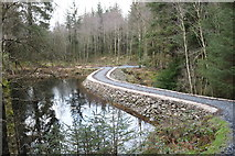 NX4465 : Forest Trail passing Little Bruntis by Billy McCrorie