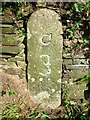 SX0780 : Old Milestone by the A39 in Knightsmill by Rosy Hanns
