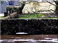 H4772 : High water level at Cranny footbridge by Kenneth  Allen