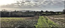 TQ2115 : Henfield, Sussex - view south from Spring Hill by Ian Cunliffe