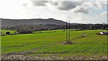 TQ1813 : View WSW towards Chanctonbury Ring - from the footpath near Shelleys by Ian Cunliffe