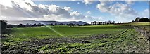 TQ1913 : View towards the South Downs from the Downs Link by Ian Cunliffe