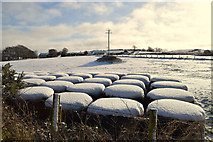 H5559 : Snow capped bales, Garvaghy by Kenneth  Allen
