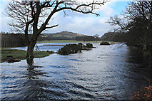 NS2072 : Kip Water in flood by Thomas Nugent