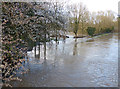 SK5701 : Flooding along the Grand Union Canal by Mat Fascione