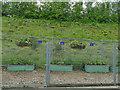 NT3461 : Gorebridge station - secure planting by Stephen Craven