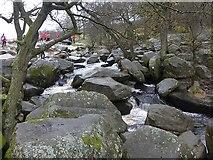 SK2579 : Burbage Brook by Graham Hogg