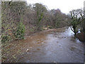 SE1238 : The river Aire in spate at Dowley Gap by Stephen Craven