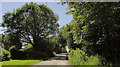 SS3108 : Lane past West Hamsworthy by Derek Harper