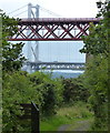 NT1380 : A glimpse of the two Forth bridges by Mat Fascione