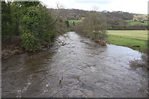 SK3057 : High water on the River Derwent by Andrew Abbott