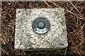 NY4728 : Top of the Penrith Fundamental Bench Mark by Luke Shaw