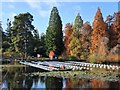 TQ7233 : View of Aether & Hemera's 'Voyage' at Bedgebury National Pinetum by J W