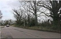 TQ6078 : Warren Lane, Chafford Hundred by David Howard