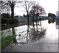 ST3089 : Trees reflected in flood water, Kimberley Park, Newport by Jaggery