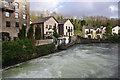 SD3584 : River Leven at Backbarrow by Ian Taylor