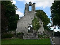 S4943 : Saint Kieran's Church, Glebe, Kells by Eirian Evans