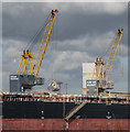 J3576 : Cranes, Belfast by Rossographer