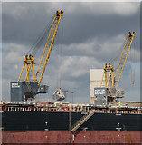 J3576 : Cranes, Belfast by Rossographer