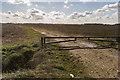 TF1012 : Track towards Red Inn Field by Julian P Guffogg