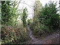 TQ5842 : Public footpath near Southborough by Malc McDonald