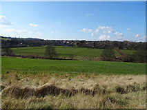 SE1421 : Farmland, Toothill Bank by JThomas