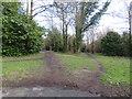 TQ5738 : Paths on Tunbridge Wells Common by Malc McDonald