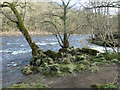 NZ0120 : The confluence of Wilden Beck and the River Tees by Christine Johnstone