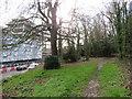 TQ5738 : Path on Tunbridge Wells Common by Malc McDonald