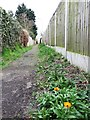 TM1614 : Footpath from Blenheim Road to Park Road by Duncan Graham