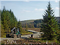SN7152 : Forestry activity south-east of Llanddewi Brefi in Ceredigion by Roger  Kidd