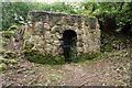 NS3760 : Ice house, Castle Semple by Richard Sutcliffe