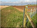 SK9476 : Footpath to North Carlton, Lincolnshire by Oliver Mills