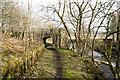 NY8638 : Path passing beneath Blackdene Mine Bridge by Trevor Littlewood