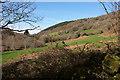 SX7882 : Wray Brook valley by Derek Harper