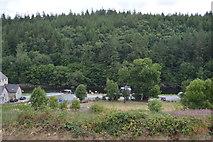 S7237 : River Barrow by N Chadwick