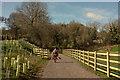 SX7881 : Wray Valley Trail at Lustleigh by Derek Harper