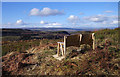 NH4937 : Bench with a view, Boblainy Forest by Craig Wallace